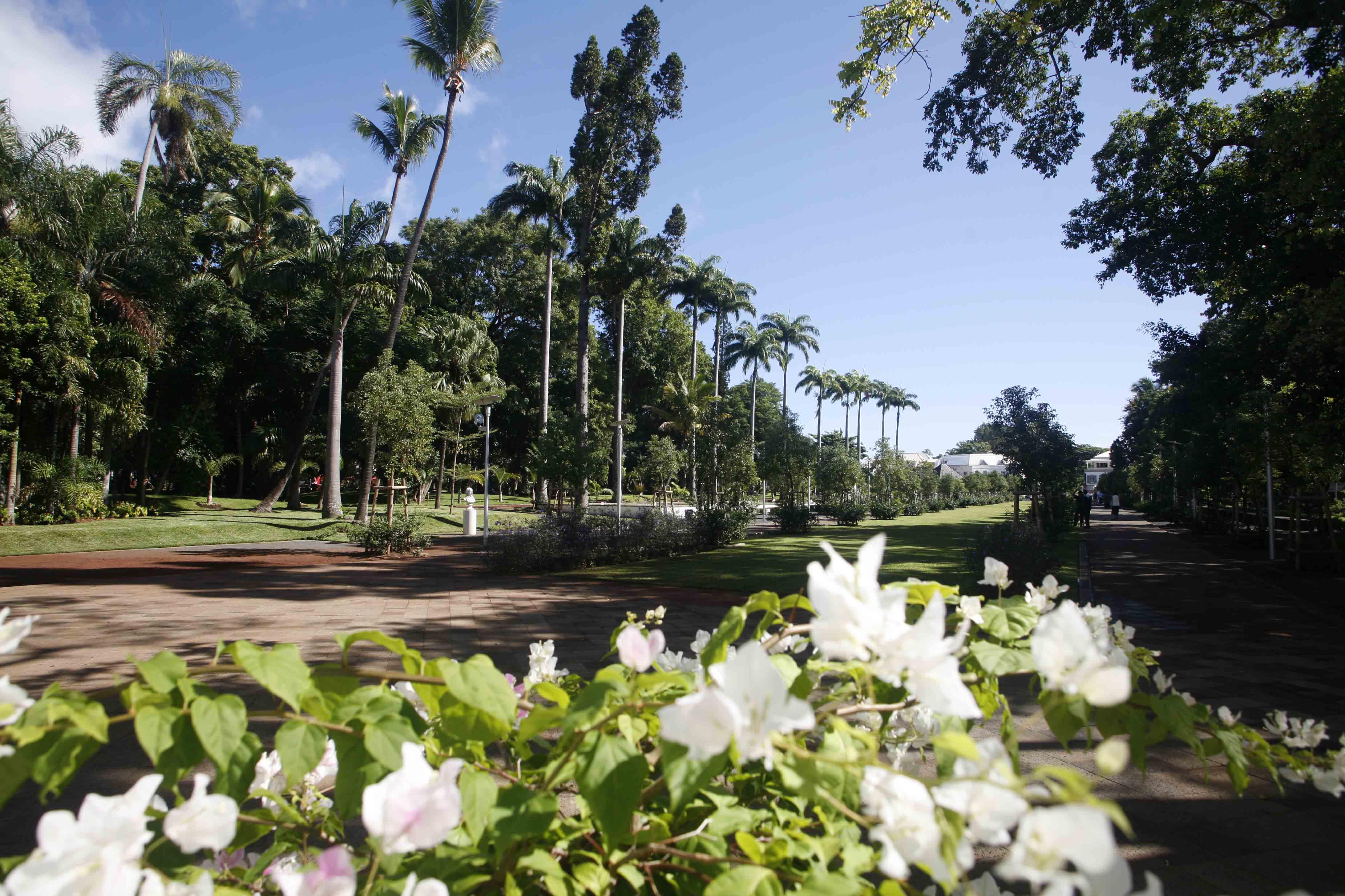 Le jardin de l etat ville de saint denis de la r union l 39 humain pour nous c 39 est capital - Jardin potager bio saint denis ...